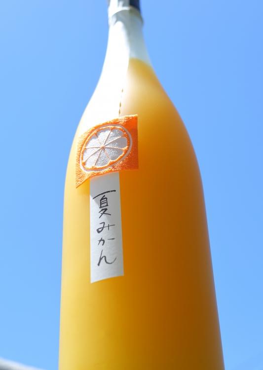 鶴梅 夏みかん(和歌山県)